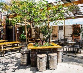 eco-friendly garden cafe